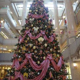 クリスマスディナー♡産後ヘルパーのお料理で楽しんでいただきました